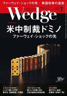 2019-6-4-Wedge.jpg